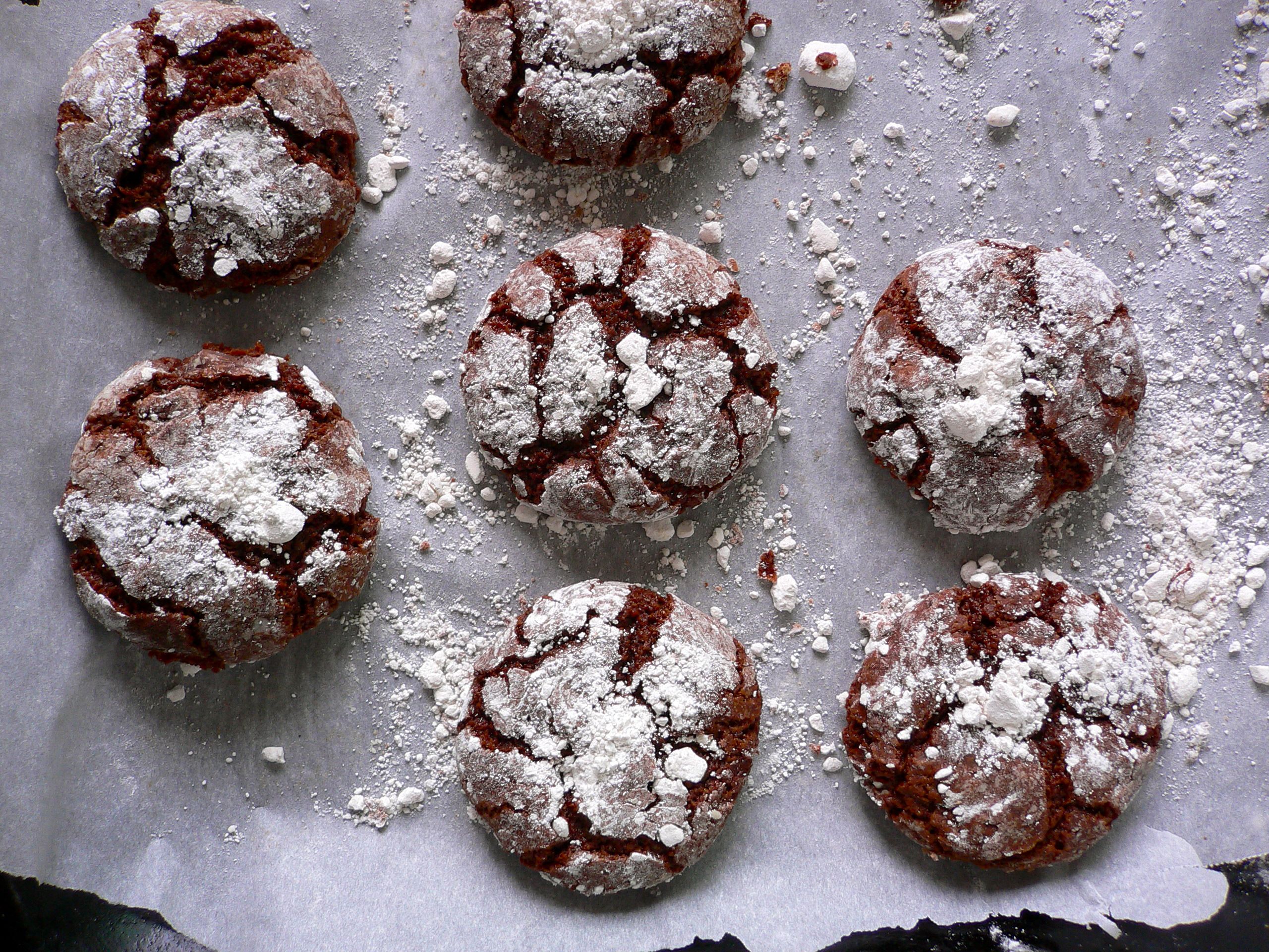 Unsweetened Cocoa Powder Cookie Recipes